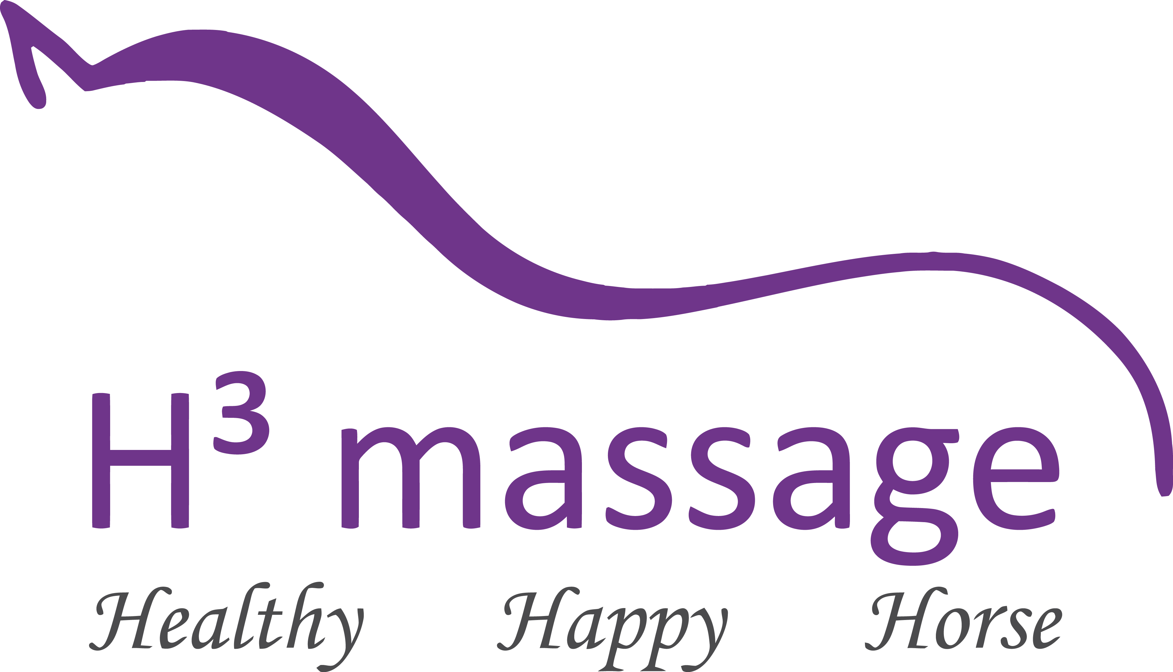 H3 Massage | Dé sportmassage voor paard & pony